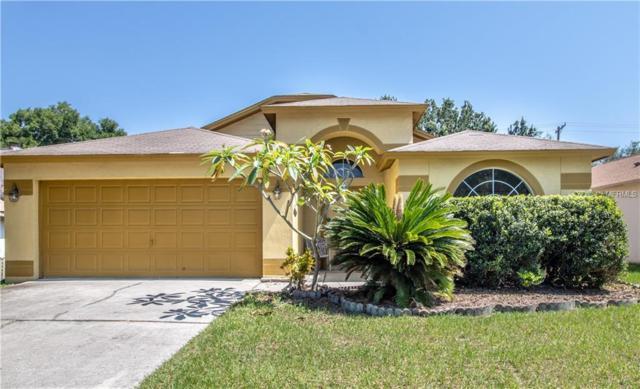 11308 Jim Court, Riverview, FL 33569 (MLS #T3175356) :: Team Bohannon Keller Williams, Tampa Properties