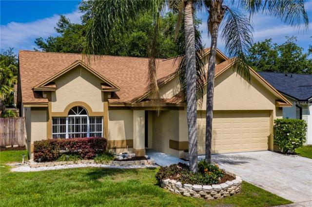 9758 Fox Chapel Road, Tampa, FL 33647 (MLS #T3175381) :: Team Bohannon Keller Williams, Tampa Properties