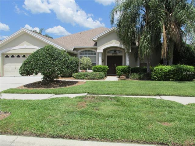 18806 Forest Glen Court, Tampa, FL 33647 (MLS #T3175384) :: Team Bohannon Keller Williams, Tampa Properties