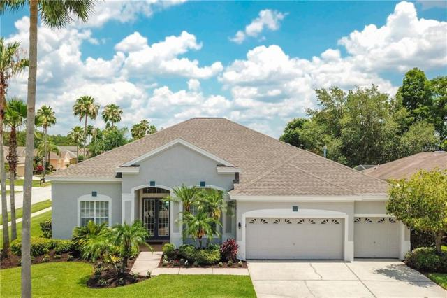 10505 Gretna Green Drive, Tampa, FL 33626 (MLS #T3175390) :: The Duncan Duo Team