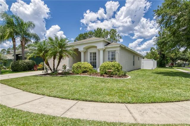 19651 Bellehurst Loop, Land O Lakes, FL 34638 (MLS #T3175421) :: The Duncan Duo Team