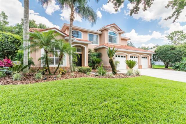 9163 Highland Ridge Way, Tampa, FL 33647 (MLS #T3175424) :: Team Bohannon Keller Williams, Tampa Properties