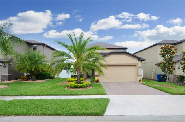 1688 Hadden Hall Place, Trinity, FL 34655 (MLS #T3175462) :: The Duncan Duo Team