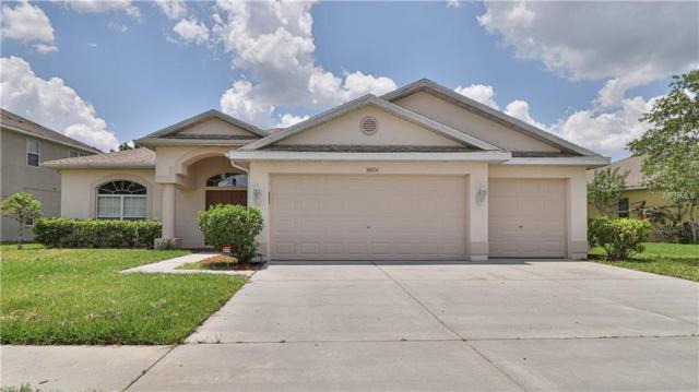 30114 Five Farms Avenue, Wesley Chapel, FL 33543 (MLS #T3175501) :: Team Bohannon Keller Williams, Tampa Properties