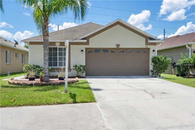 31432 Triborough Drive, Wesley Chapel, FL 33545 (MLS #T3175511) :: The Duncan Duo Team