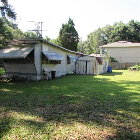 3312 Little Road, Valrico, FL 33596 (MLS #T3175526) :: Griffin Group
