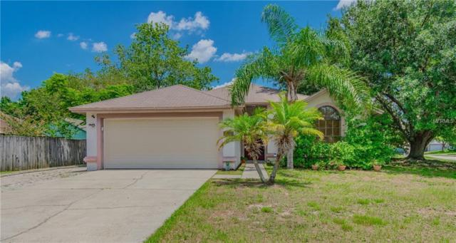 12008 Vermillion Way, Riverview, FL 33569 (MLS #T3175565) :: Jeff Borham & Associates at Keller Williams Realty
