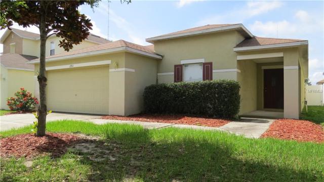 13511 Blue Sunfish Court, Riverview, FL 33569 (MLS #T3175583) :: Jeff Borham & Associates at Keller Williams Realty