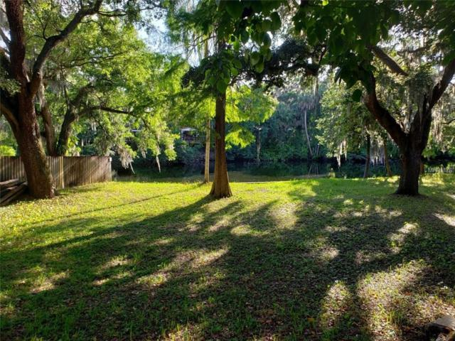 7806 N 14TH Street, Tampa, FL 33604 (MLS #T3175592) :: White Sands Realty Group
