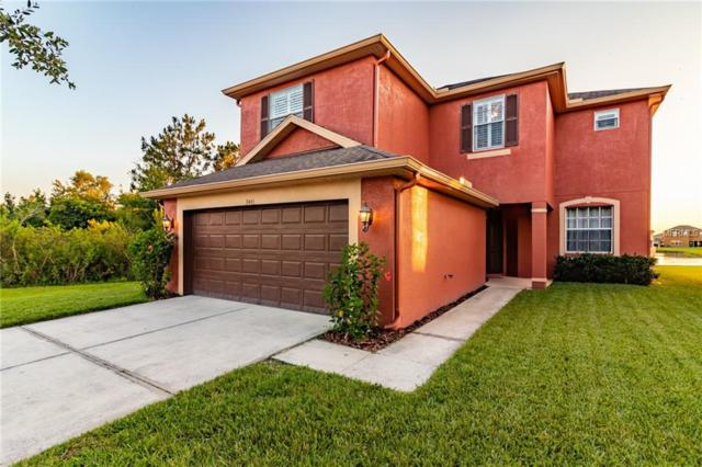 9443 Leatherwood Avenue, Tampa, FL 33647 (MLS #T3175593) :: Cartwright Realty