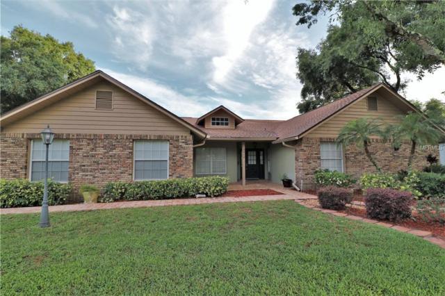 3916 Broomsedge Lane, Valrico, FL 33596 (MLS #T3175599) :: Team Bohannon Keller Williams, Tampa Properties