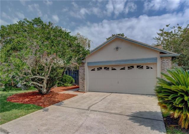 5015 Cypress Trace Drive, Tampa, FL 33624 (MLS #T3175611) :: Lovitch Realty Group, LLC