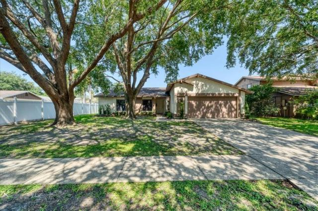 15906 Eagle River Way, Tampa, FL 33624 (MLS #T3175633) :: The Robertson Real Estate Group