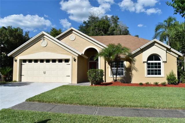 8933 Bayaud Drive, Tampa, FL 33626 (MLS #T3175635) :: Team Bohannon Keller Williams, Tampa Properties