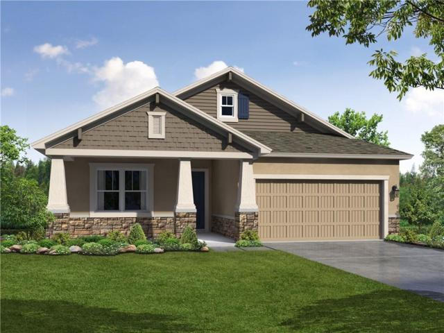 11209 Paddock Manor Avenue, Riverview, FL 33569 (MLS #T3175640) :: The Duncan Duo Team
