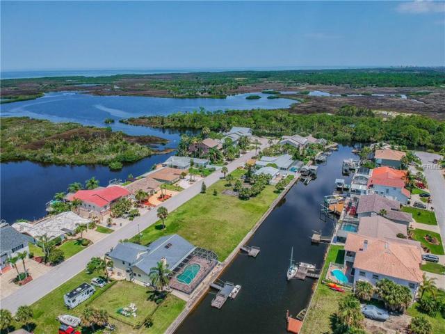 9811 San Sebastian Way, Port Richey, FL 34668 (MLS #T3175646) :: Cartwright Realty