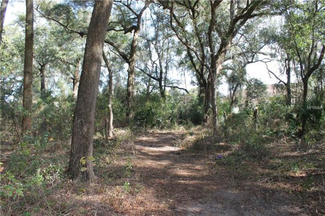 Neighbors Path, Zephyrhills, FL 33542 (MLS #T3175663) :: Lock & Key Realty