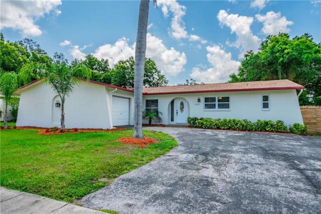 2470 Sunny Breeze Avenue, Largo, FL 33770 (MLS #T3175677) :: Lovitch Realty Group, LLC