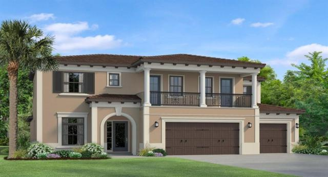 17916 Barn Close Drive, Lutz, FL 33559 (MLS #T3175682) :: Team Bohannon Keller Williams, Tampa Properties