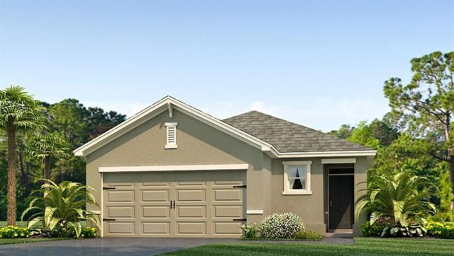 8036 Pelican Reed Circle, Wesley Chapel, FL 33545 (MLS #T3175729) :: The Duncan Duo Team