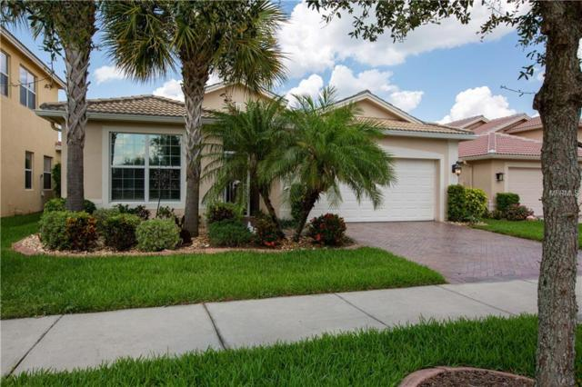 15908 Golden Lakes Drive, Wimauma, FL 33598 (MLS #T3175771) :: Team Bohannon Keller Williams, Tampa Properties