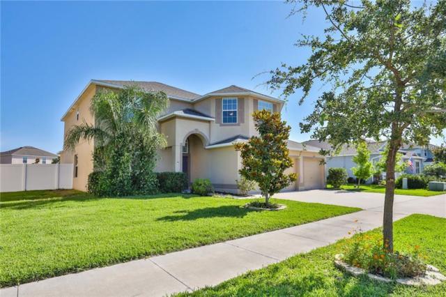 212 Orange Mill Avenue, Ruskin, FL 33570 (MLS #T3175778) :: The Robertson Real Estate Group
