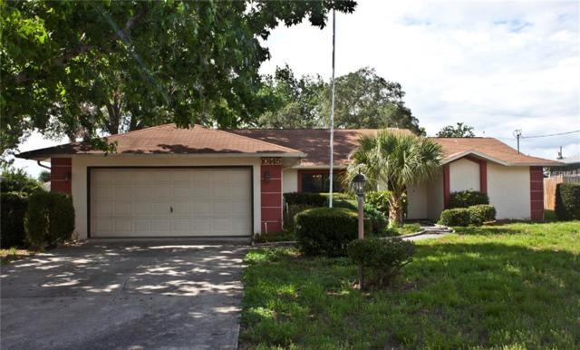 10145 Carrin Road, Spring Hill, FL 34608 (MLS #T3175789) :: Team Bohannon Keller Williams, Tampa Properties