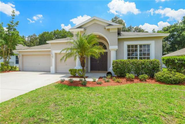 2013 Samantha Lane, Valrico, FL 33594 (MLS #T3175804) :: White Sands Realty Group
