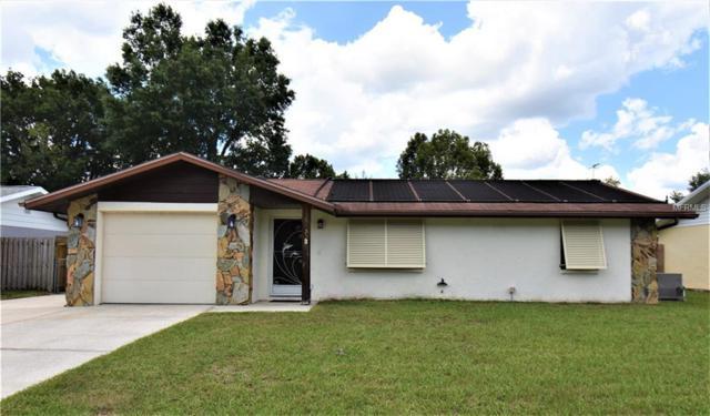 39435 8TH Avenue, Zephyrhills, FL 33542 (MLS #T3175810) :: Team Bohannon Keller Williams, Tampa Properties