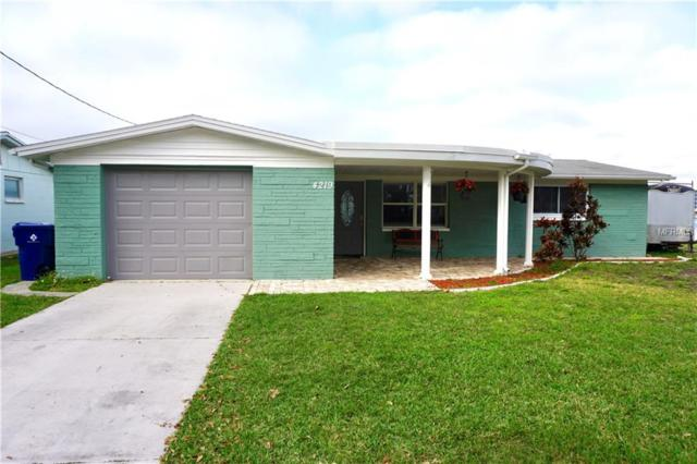 4219 Baden Drive, Holiday, FL 34691 (MLS #T3175814) :: Team Bohannon Keller Williams, Tampa Properties