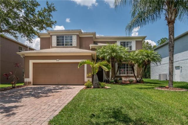 13210 Royal George Avenue, Odessa, FL 33556 (MLS #T3175851) :: Team Bohannon Keller Williams, Tampa Properties