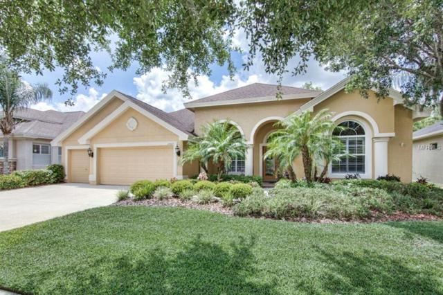 23615 Gracewood Circle, Land O Lakes, FL 34639 (MLS #T3175874) :: The Duncan Duo Team
