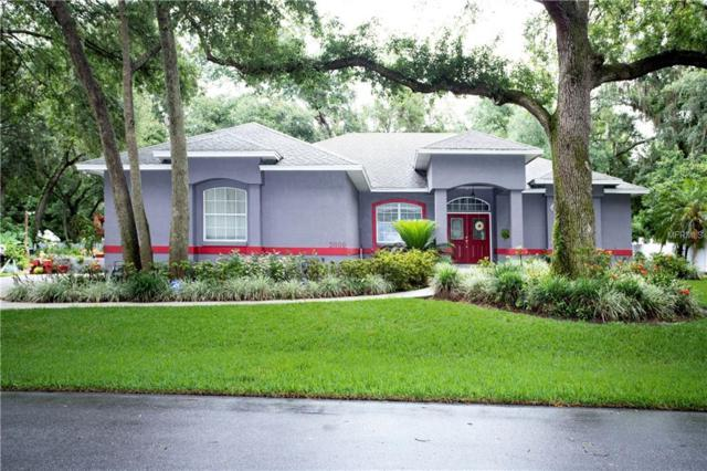 2009 Hoof Print Lane, Lakeland, FL 33811 (MLS #T3175899) :: The Duncan Duo Team