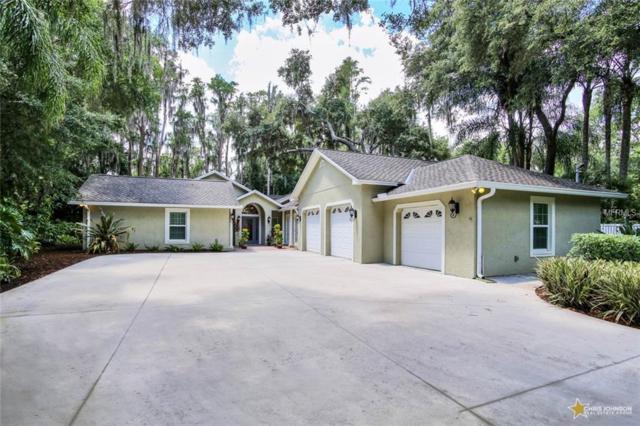 6230 Fitzgerald Road, Odessa, FL 33556 (MLS #T3175905) :: Team Bohannon Keller Williams, Tampa Properties