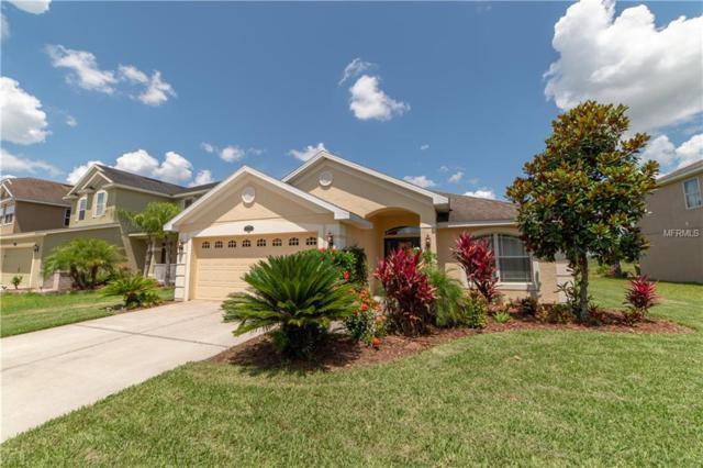 20224 Natures Spirit Drive, Tampa, FL 33647 (MLS #T3175927) :: Delgado Home Team at Keller Williams