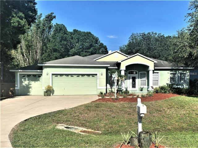 908 Riviere Road, Palm Harbor, FL 34683 (MLS #T3175929) :: The Duncan Duo Team