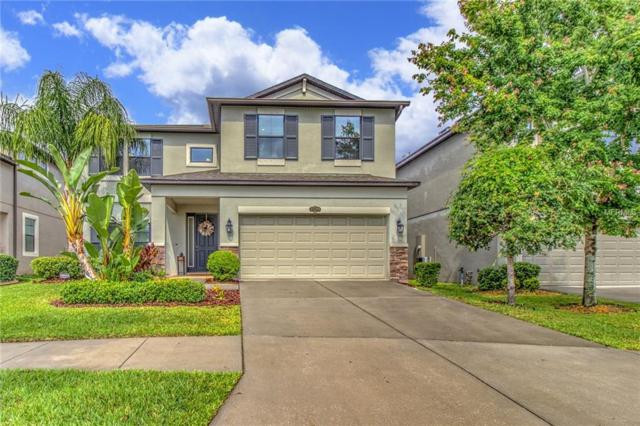 11509 Blue Crane Street, Riverview, FL 33569 (MLS #T3175930) :: Team Bohannon Keller Williams, Tampa Properties