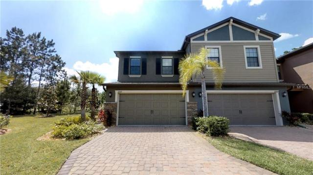 17269 Old Tobacco Rd, Lutz, FL 33558 (MLS #T3175936) :: Griffin Group