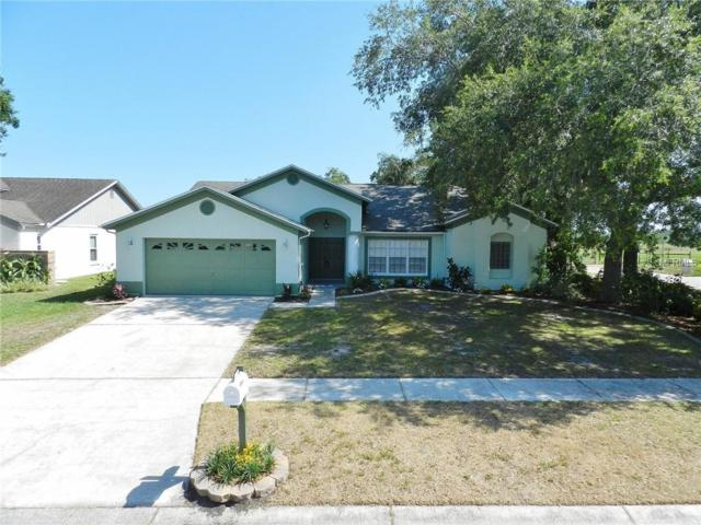 12301 Windswept Avenue, Riverview, FL 33569 (MLS #T3175952) :: The Figueroa Team