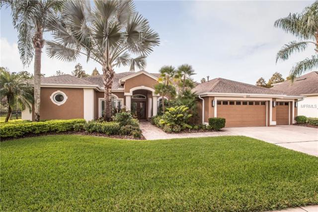 12129 Clear Harbor Drive, Tampa, FL 33626 (MLS #T3175972) :: Team Suzy Kolaz