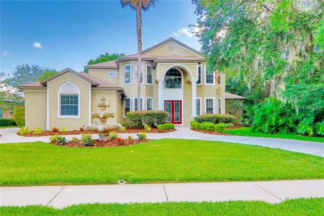 6245 Kingbird Manor Drive, Lithia, FL 33547 (MLS #T3175979) :: The Brenda Wade Team