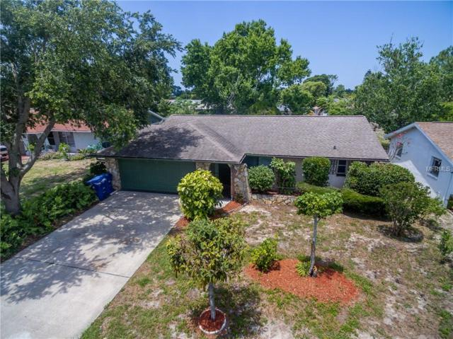 8915 Roble Way, Port Richey, FL 34668 (MLS #T3175982) :: The Duncan Duo Team