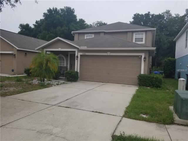 10412 River Bream Drive, Riverview, FL 33569 (MLS #T3175989) :: The Robertson Real Estate Group