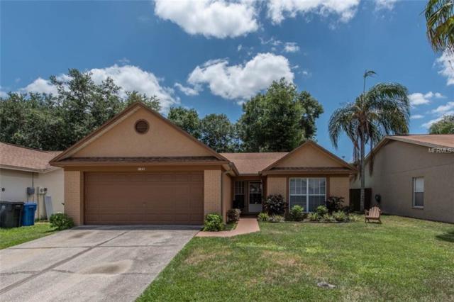 1125 Hardwood Drive, Valrico, FL 33596 (MLS #T3175990) :: Jeff Borham & Associates at Keller Williams Realty
