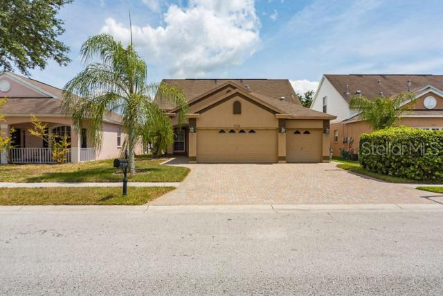 Address Not Published, New Port Richey, FL 34655 (MLS #T3175997) :: Griffin Group