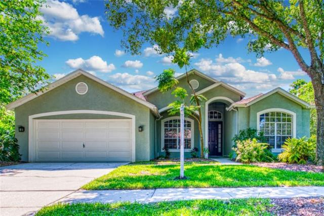 8509 Kings Rail Way, Tampa, FL 33647 (MLS #T3176002) :: Cartwright Realty
