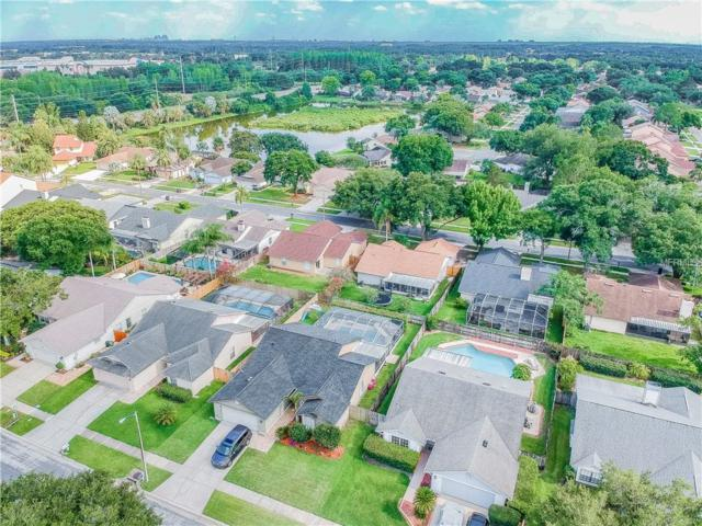 8713 Hampden Drive, Tampa, FL 33626 (MLS #T3176006) :: The Robertson Real Estate Group