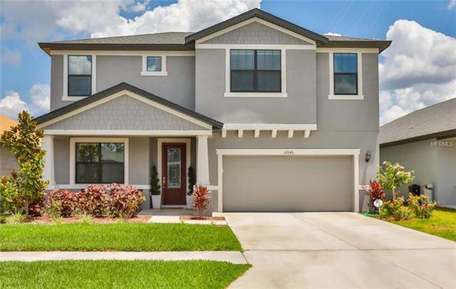 12046 Creek Preserve Drive, Riverview, FL 33579 (MLS #T3176047) :: Team Bohannon Keller Williams, Tampa Properties
