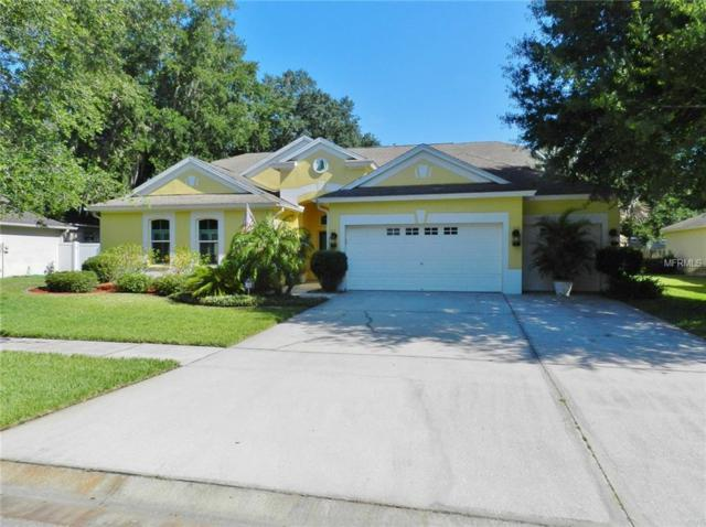 12609 River Birch Drive, Riverview, FL 33569 (MLS #T3176064) :: Team Bohannon Keller Williams, Tampa Properties