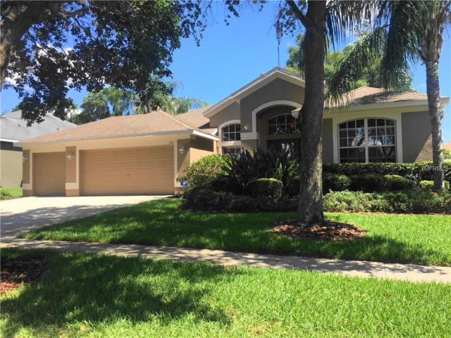 3111 Red Lion Drive, Valrico, FL 33596 (MLS #T3176089) :: The Duncan Duo Team
